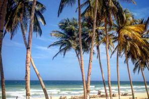 Wenezuela – Tanie i Bezpieczne Podróżowanie Po Kraju – Poradnik Praktyczny